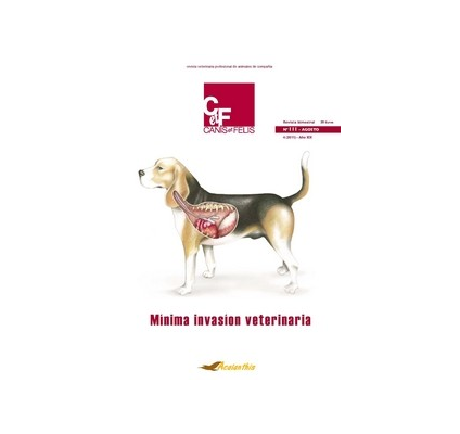 Canis et Felis - Nº III - Mínima invasión veterinaria