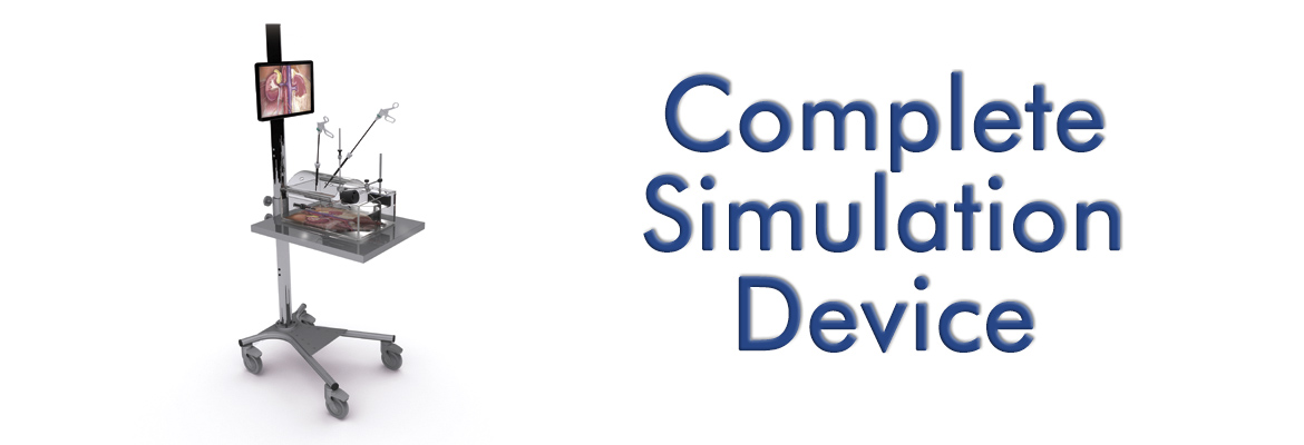 Complete Simulation Device